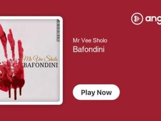 Mr Vee Sholo – Bafondini