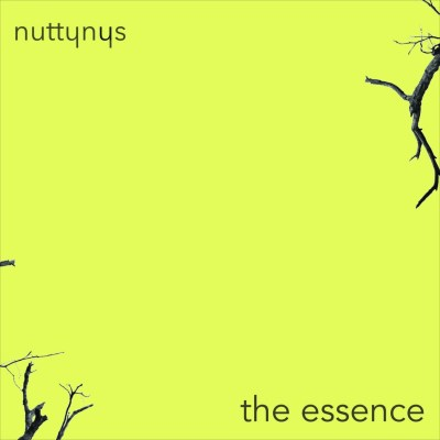 Nutty Nys – The Essence