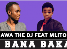 Salmawa The DJ – Bana Baka Ft. Mlitos (Original)