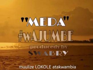 Meda – Wajumbe