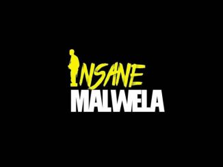 Insane Malwela & Cheestos – Demented Us