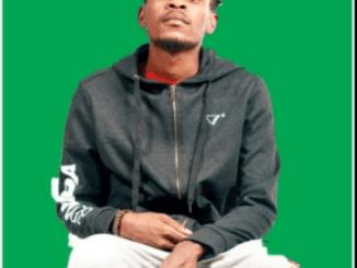 King Salama, Chillibite & Lesmahlanyeng – O Ngwana Mang Ft. Quayr Music