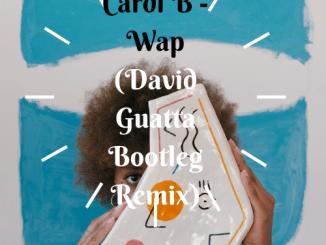 Cardi B - Wap (David Guatta Bootleg Remix)
