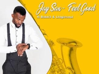 Jay Sax – Feel Good Ft. Bakk3 & Llogicsoul
