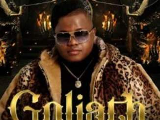 Dladla Mshunqisi – Goliath