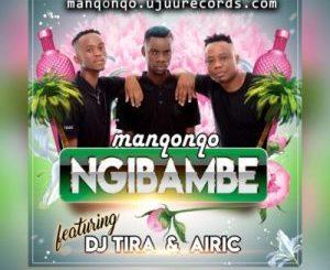 MANQONQO – NGIBAMBE