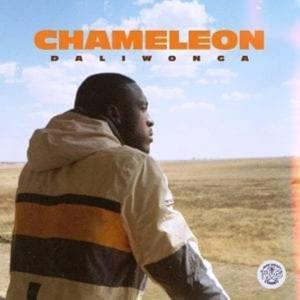 Daliwonga – Chameleon