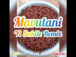 Mavutani - Yi Sukile Remix [2020] New Hit