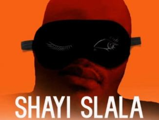 Dr Malinga – Shayi Slala Ft. Team Mosha & Seven Step