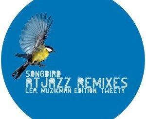 Lea, Muzikman Edition – Songbird