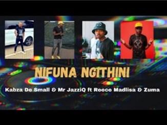 Kabza De Small & Mr Jazziq – Nifuna Ngithini Ft. Reece Madlisa & Zuma