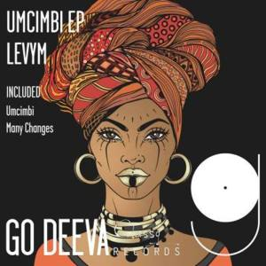LevyM – Many Changes (Original Mix)