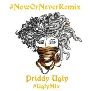 Priddy Ugly – Now or Never (UglyMix)