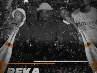 Team Donoza x Saxoboy x JR 97 – Reka Veuve ft. Tsonga Rap God, T-Boss & Mercury 012