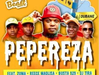 VIDEO: Beast – Pepereza Ft. DJ Tira, Reece Madlisa, Zuma, Busta 929,Beast – Pepereza