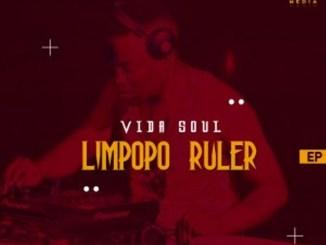 Vida-Soul Ft. Twin Beats & Soulic M – Closer