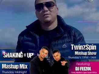 DJ FeezoL – TwinzSpin Mashup Show Mix