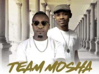 Team Mosha Ft. Mapara A Jazz & Colano – Phuzi Mali Yakho