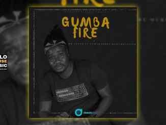 Mr Lenzo – Gumba fire ft Leon Lee x Morumba Pitch x Zama Radebe