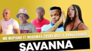 Mr Mapiano Ft. Madamax, Sosha Boyz & Bonguthando – Savanna