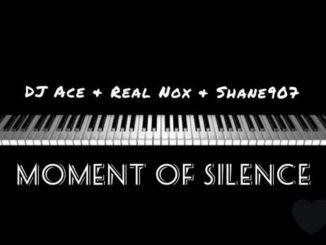 Umjolo Uyanyisa Amapiano, The Double Trouble - Ngijola no john, DJ Ace, Real Nox & Shane907 – Moment of Silence
