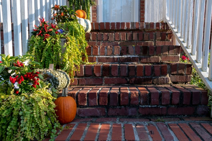 Easy Fall Planter Arrangements You Can Make in 10 Minutes