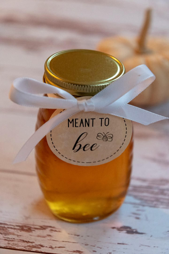 Meant to Bee Honey Wedding Favor Gift Tags
