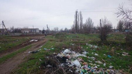 Шприцы и трупы животных: жители райцентра на Херсонщине просят разобраться со стихийными свалками