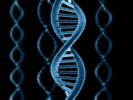 Банки ДНК оказались наиболее быстро растущим сегментом сети