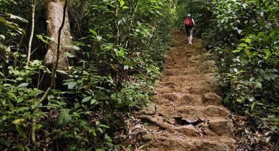 Останки советского лётчика найдены в джунглях Вьетнама