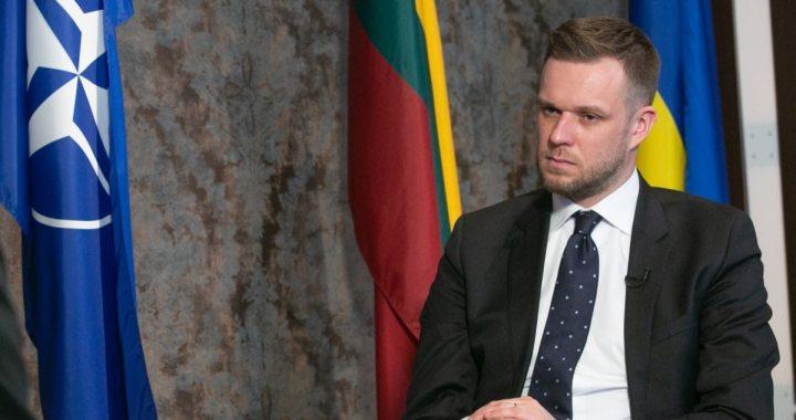 Голова МЗС Литви про «Люблінський трикутник»: «наближає євроінтеграцію України»