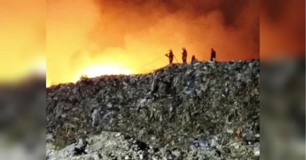 В Житомире произошел крупный пожар на свалке - фото - «ФАКТЫ»