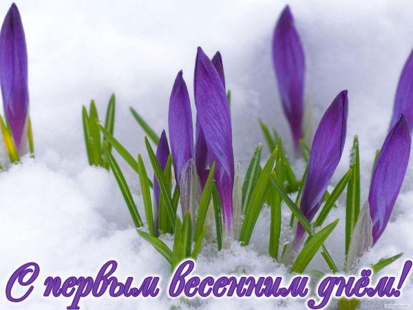 Первый день весны – картинки, поздравления, открытки с 1 ...