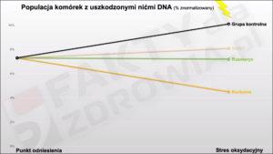 Przyprawy chroniące przed uszkodzeniem DNA