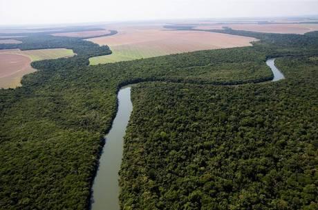 Por estradas e portos, governo quer reduzir 60 florestas e reservas