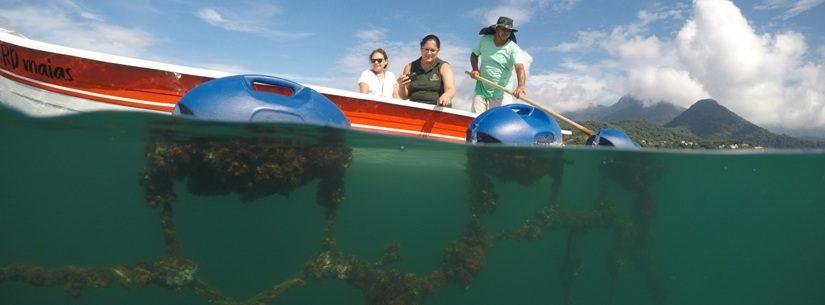 Comtur aprova passeio turístico para Fazenda de Mexilhão na Cocanha
