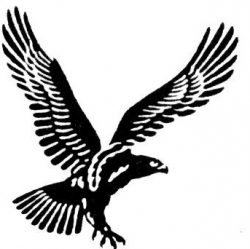 Falcon Yacht Club logo