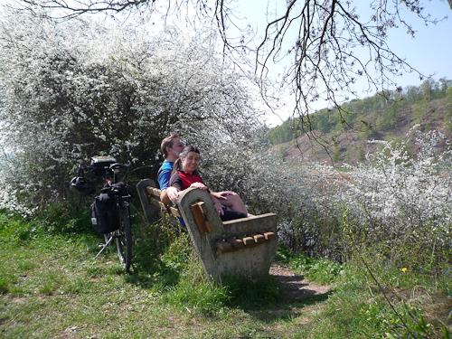 Fruktpaus vid Weser med blommande träd och buskar