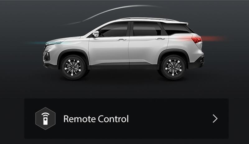 Hector Remote Control