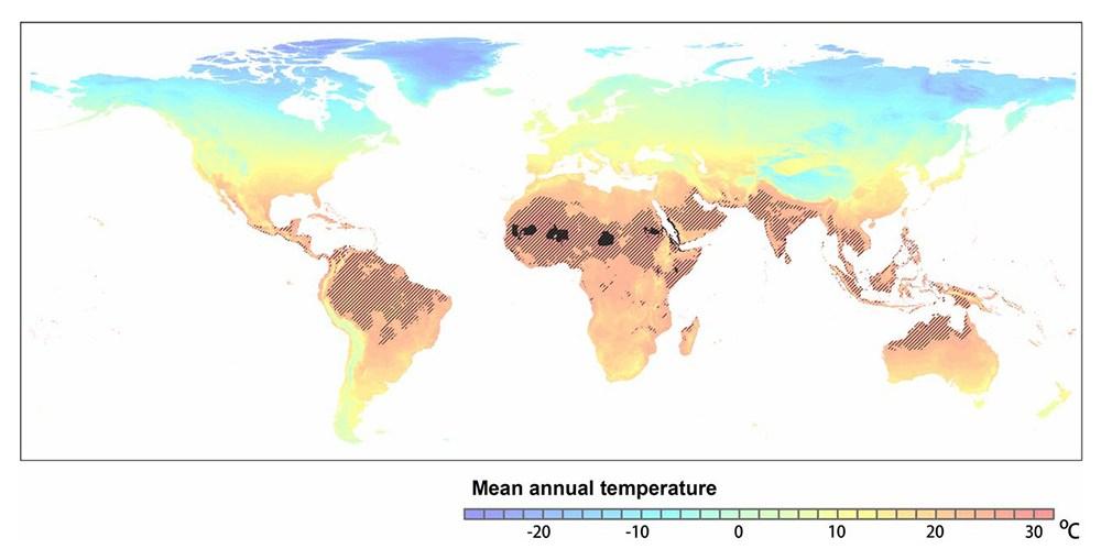 Mean Average Temperatures around the world