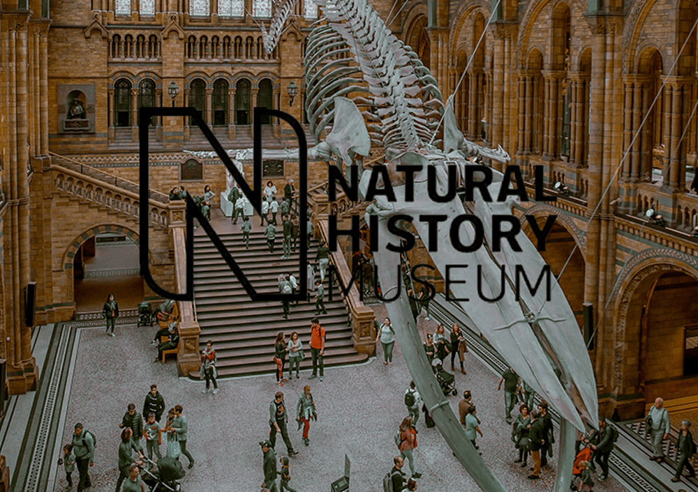 Natural History Museum - Projects image and logo 1000x706