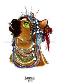 Feline Origins: The Burmese