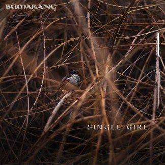 A photo of a House Sparrow in some willow, which is the cover image for Bùmarang's single Single Girl