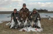 Spring Goose Hunt - Falling Skies Guide Service