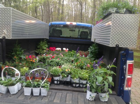 truck of flowers