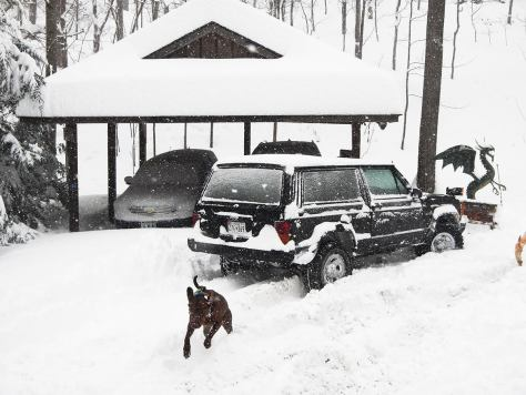 wilder jeep