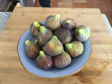 Figs.  Photo by Nora.