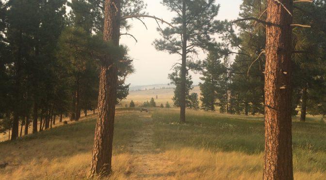 Montana – Day 6