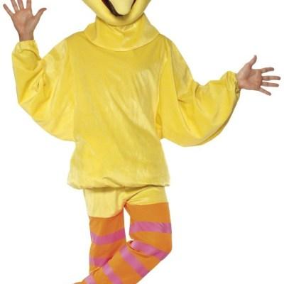 sesame street costume big bird