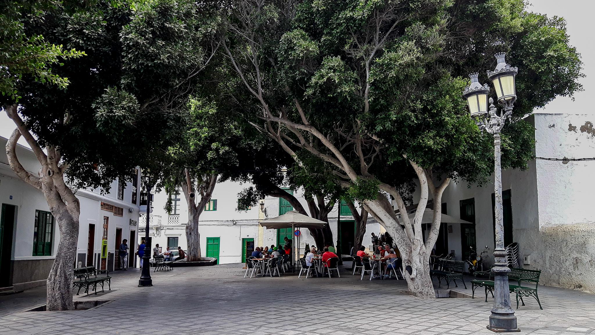 Plaza León y Castillo-caf